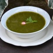 soupe très fan de radis